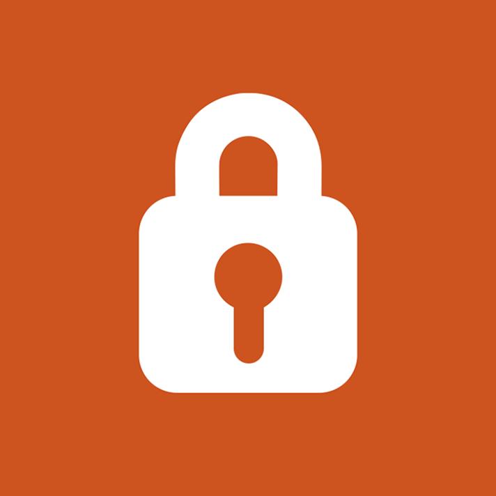 integra seguridad
